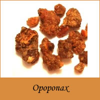 http://www.beyomol.ogfgroup.com/new/images/products/thumbs/Opoponax2.jpg